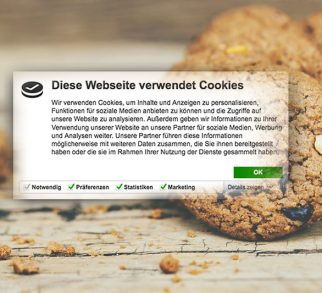Cookie-Fenster